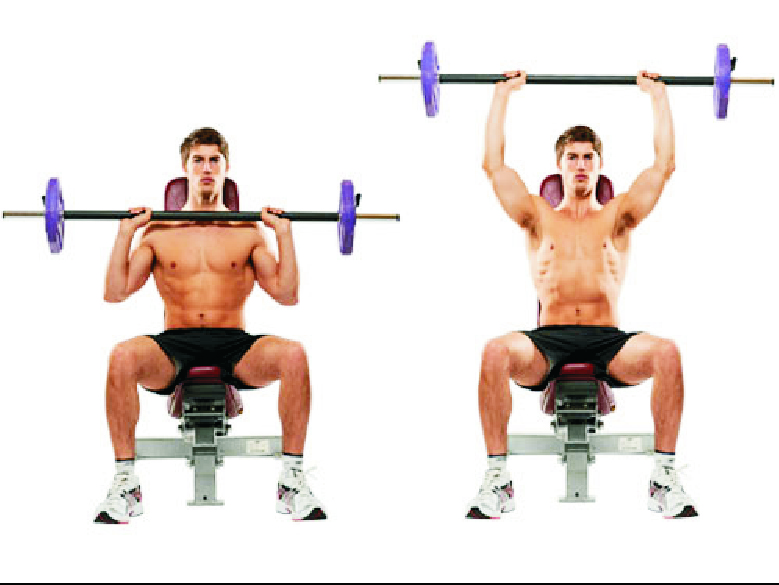 10 Best Shoulder Exercises
